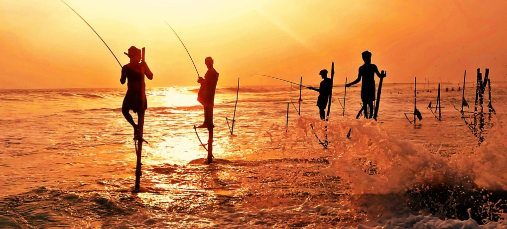 Stilt Fishermen Of Kogalla Srilanka