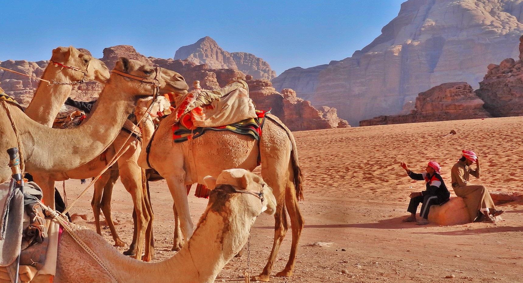 Sleeping under the stars in Wadi Rum!